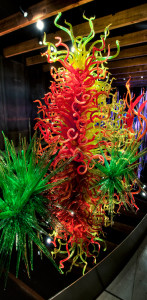 estelia chihuly pic