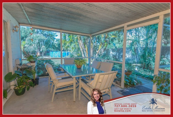 Home for Sale in St Petersburg FL