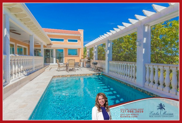 Homes for Sale in Saint Petersburg FL