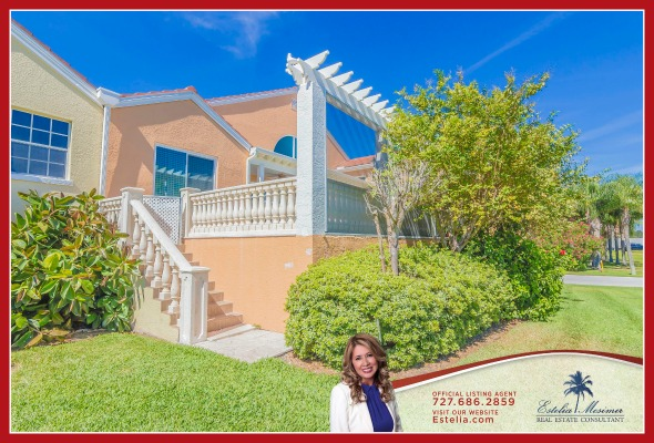 Saint Petersburg FL Best Real Estate Agent