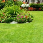 Boosting Your Home's Value with an Attractive Lawn